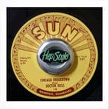 "45 Re✦DOCTOR ROSS✦""Chicago Breakdown/Come Back Baby""-Killer Blues Boppers.Hear♫"