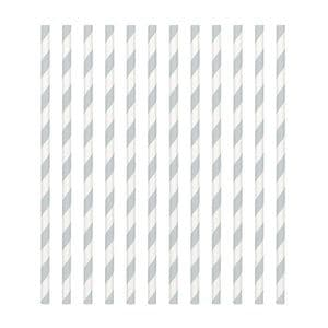 Candy Stripe Paper Straws Silver (pack of 24)