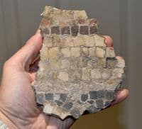 A good sized & rare segment of Roman multicoloured mosaic flooring, Gloucestershire, U.K. SOLD