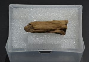A rare piece of Bronze Age wood from site of an Ancient boat excavation, East Yorkshire (K5)