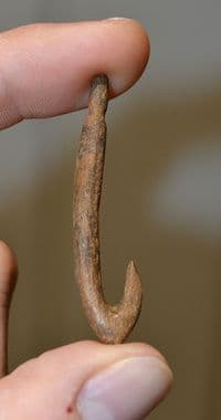 """An Extremely Rare Upper Paleolithic """"Magdalenian"""" large carved bone fishing hook,  France. SOLD"""