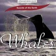 Whales - Sounds of the Earth