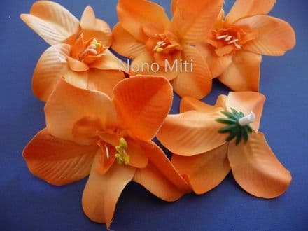 12-30 x tête orchidée dendobrium * orange