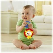 Fisher Price Lion Mirror Baby Toy
