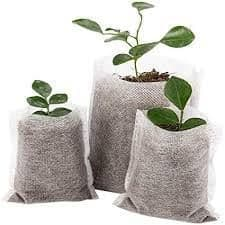 50 Biodegradable Seedling Bags