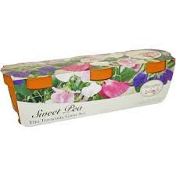 Sweet Pea Trio Gift Set