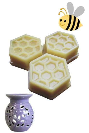 Air Purifying Beeswax Candles & Wax Melts